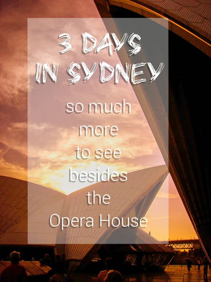 Sydney has so much to offer! One of the most livable cities on our planet #sydney #australia #travel