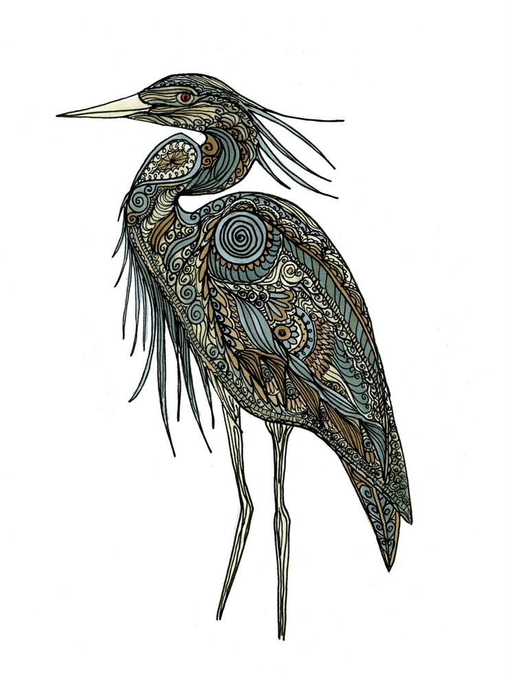 Heron Drawing | Tattoo? | Pinterest | Sketches And Drawings
