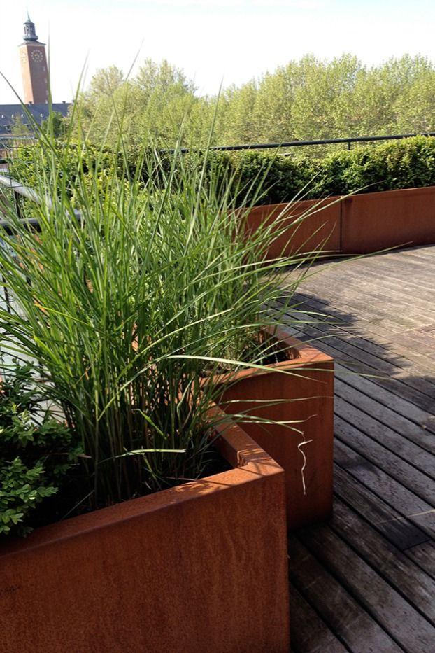 Schicker Dachterrassen Sichtschutz Aus Xl Pflanzkubeln In 2021 Pflanzkubel Pflanzkubel Aussen Beton Pflanzer