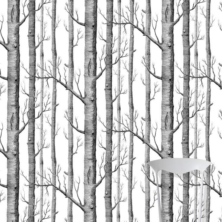 Cole&Son,Tapeta ścienna Woods - różne kolory - SKANDYNAWSKIE.PL