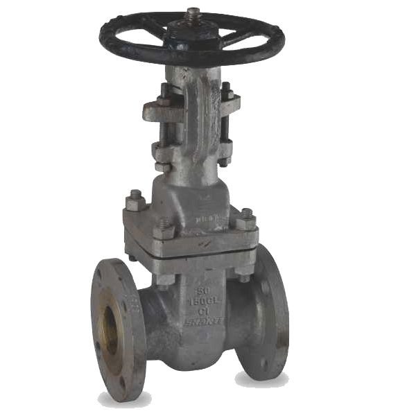 CI Gate valve