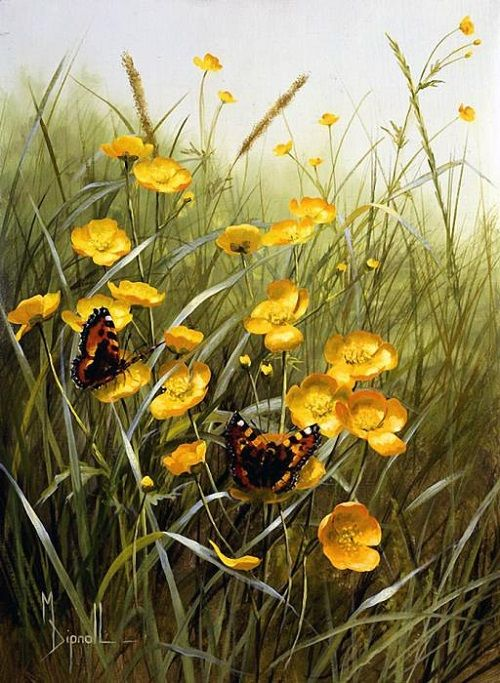 Summer wildflowers by British artist Mary Dipnall