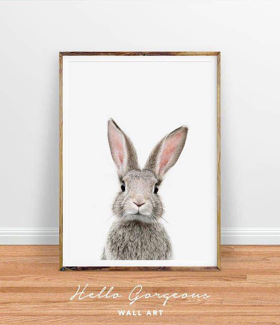 Hase Kaninchen Drucken Wandbilder Kinderzimmer Dekor Zitate