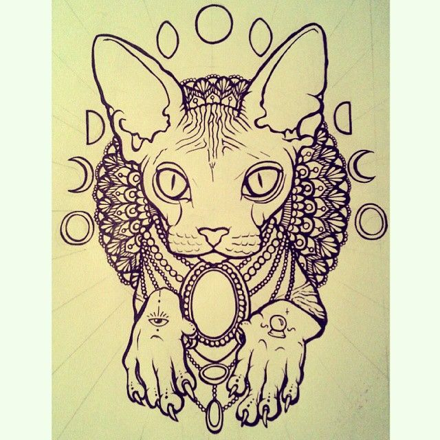 #hairless #cat #moon #phase #tattoo