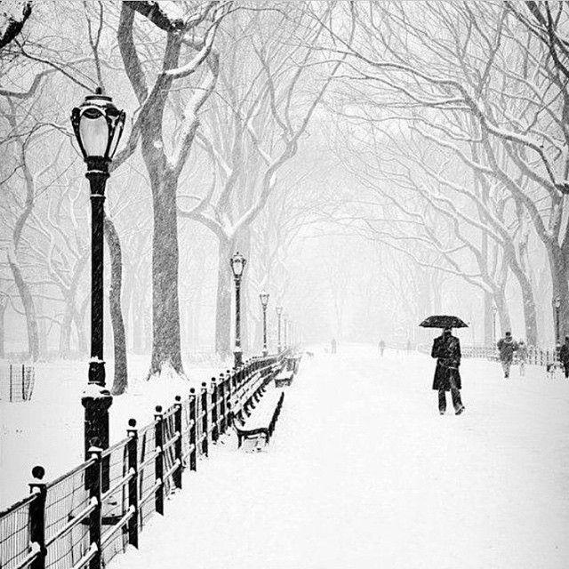 The Perfect Storm In Central Park Photo Courtesy Of Amerindersk Via Mistertraveler On Instagram Winter Landscapes Pinterest Park Photos
