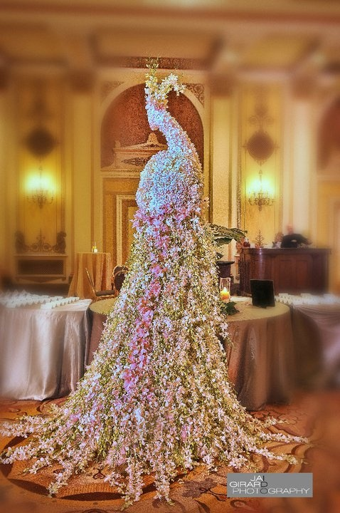 a peacock made out of flower petals..wow.