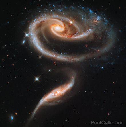 A Rose Made of Galaxies seen from the Hubble telescope