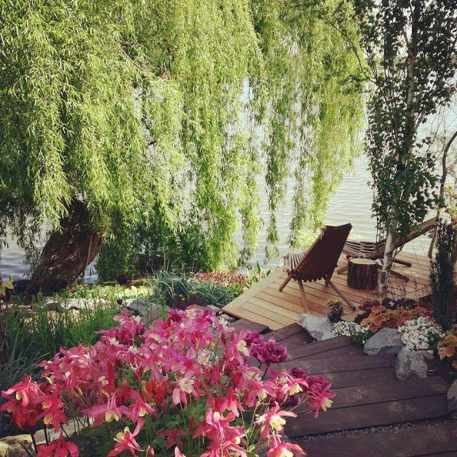 Gradina pe marginea lacului - teren in panta - gradina cu flori Amenajare gradina teren in panta. Trepte in gradina. Idei gradina cu flori. Arhitect peisagsit. Firma de amenajari gradini Bucuresti - Ilfov.
