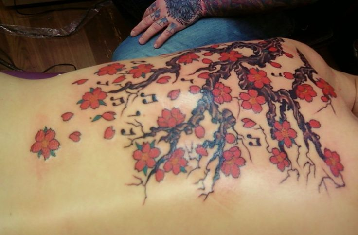 The cherry blossoms tattoo is full of meanings, value and significance in the Orient. Tattoos featuring the Cherry Blossom are a sight that you will see a lot among the Japanese and Chinese.