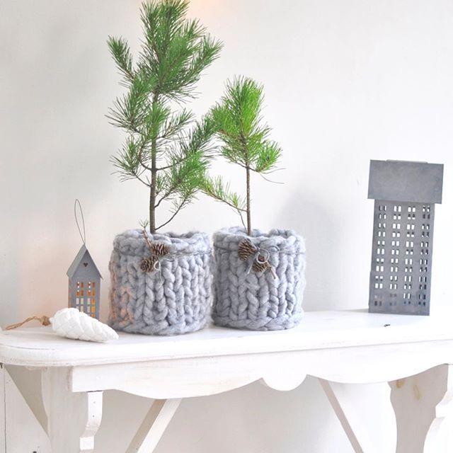 ber ideen zu guten morgen mittwoch auf pinterest mittwoch lustige sms und gb bilder. Black Bedroom Furniture Sets. Home Design Ideas