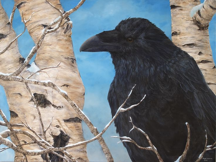 """""""La Ronge Raven"""" 2017 by James M. Clow 48""""x 36"""" Acrylic on stretched canvas"""