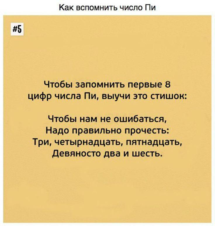 1518998663570004_AWto3ntKuo0.jpg (800×843)