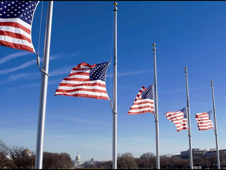 do flags fly at half staff on veterans day