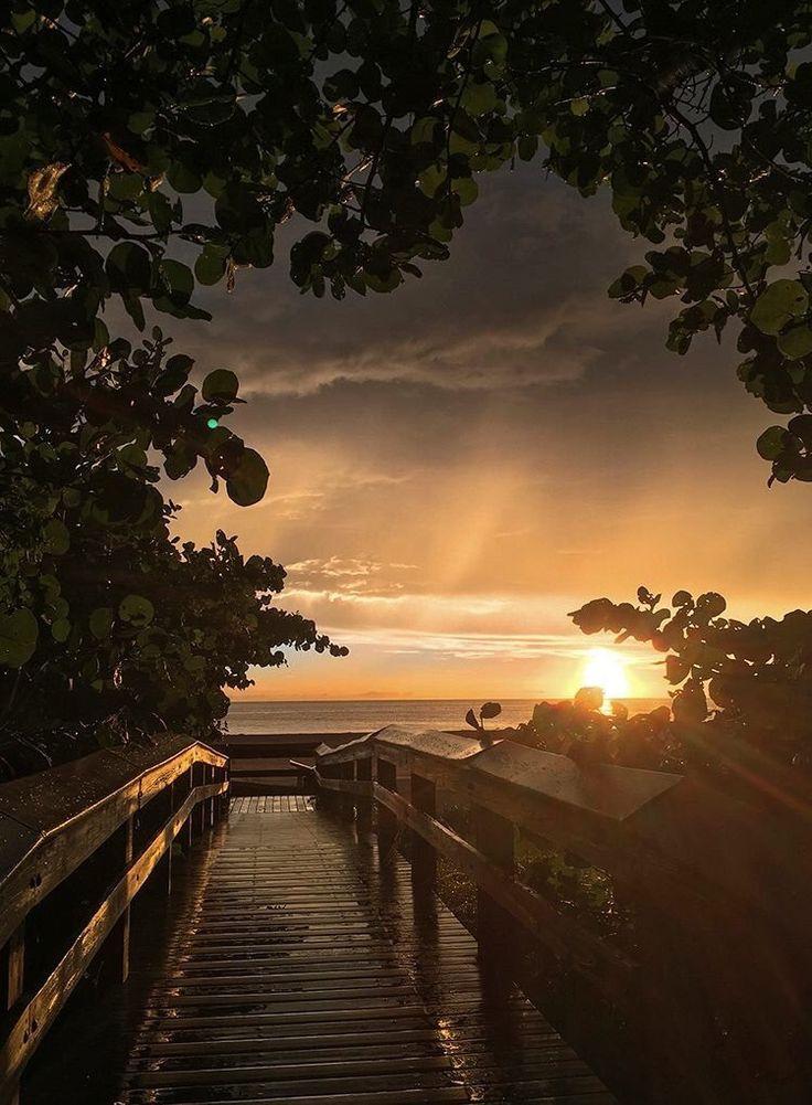 Beautiful Florida Sunset by @fltripguide #miami #florida #miamibeach #sobe #southbeach #brickell #visitflorida