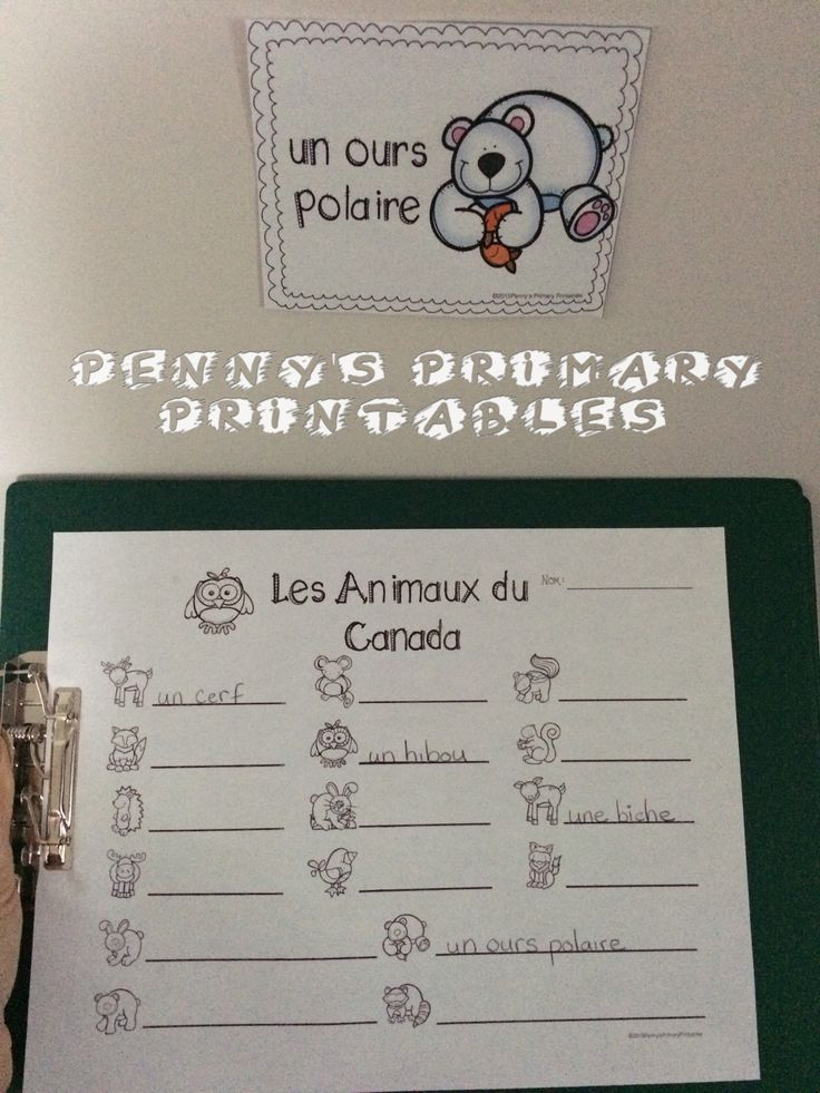 Write the Room activity included in the French Write the Room: Les Animaux du Canada set. Many French language activities included. Save money with the Write the Room bundle and get sets for the whole year! #animaux #Canada #French #Français