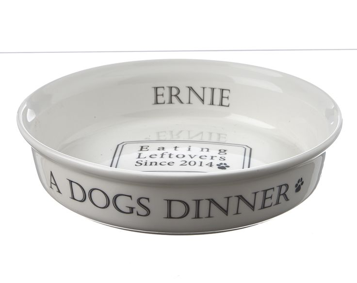 The doggy equivalent of fine dining silver service. High quality ceramic bowl.