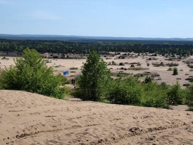 Pustynia Błędowska - skąd się wzięła, historia, wojsko, rewitalizacja