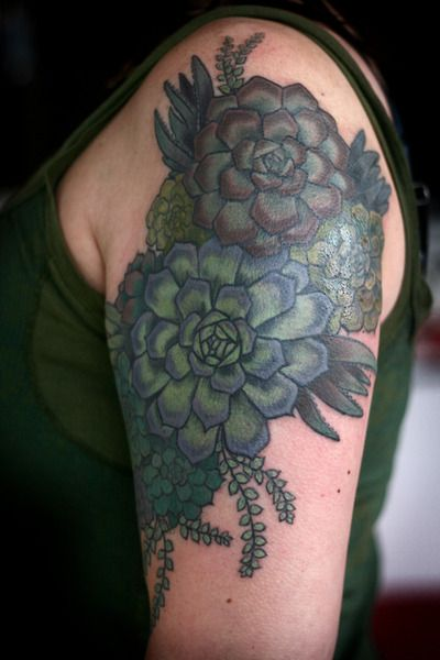 Love this! Might work for a cover up on my back. Succulent tattoo by Alice Carrier in Portland, Oregon.
