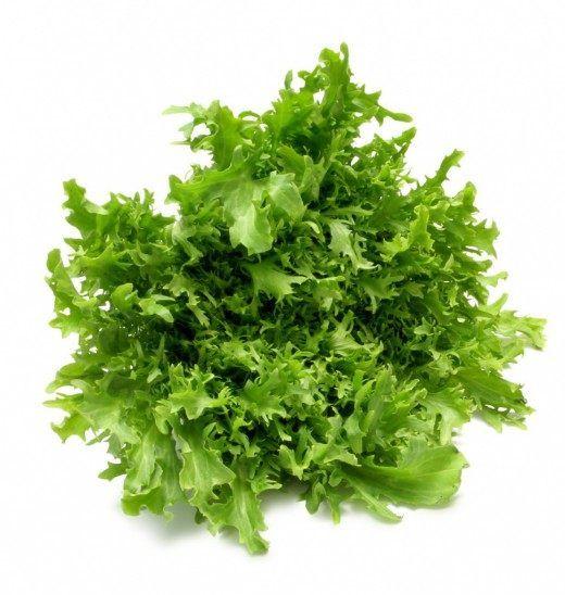 Выращивать салат листовой в комнате