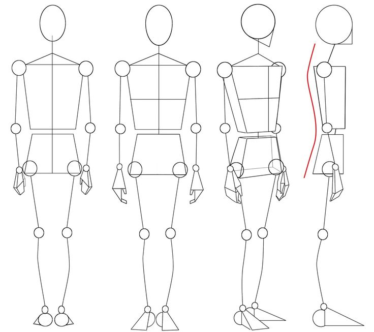Best 279 The Stick Figure Images On Pinterest Human Anatomy