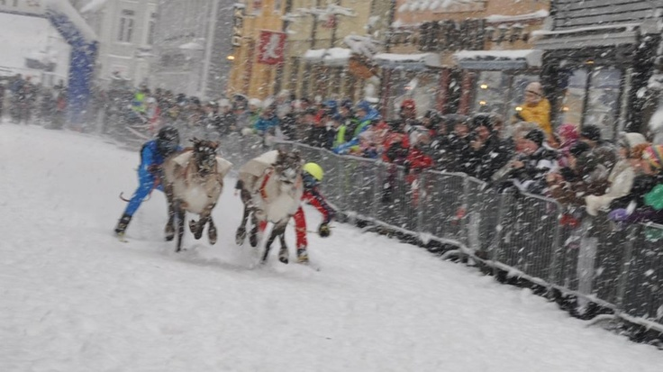 http://www.itromso.no/bilder/article3942933.ece#4  Reindeer Racing