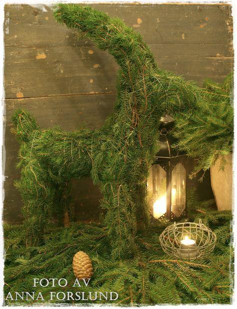 Vita rosor och förgätmigej: Beskrivning av julbock klädd i granris...
