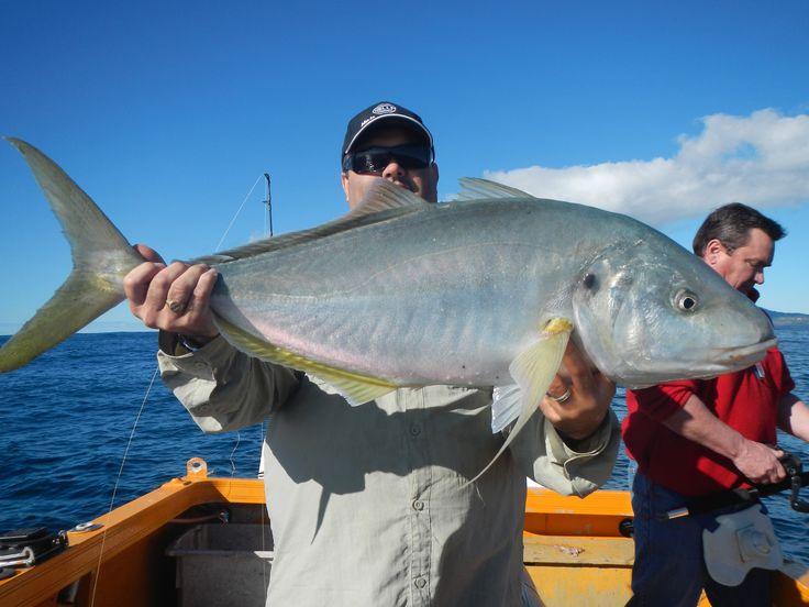 Trevally Fish on Norfolk Island