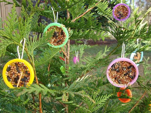 Love these bird feeders, but I have to say I would go nuts when the squirrels got them.: Allfreekidscrafts With, Eagles Books, Birds Feeders, Birds Seeds, Christmas Reggio Pr, Birds Ideas, Squirrels Food, Books Love, Allfreekidscraft With