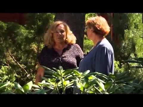 Частный сад Татьяны Малининой под Петербургом - YouTube