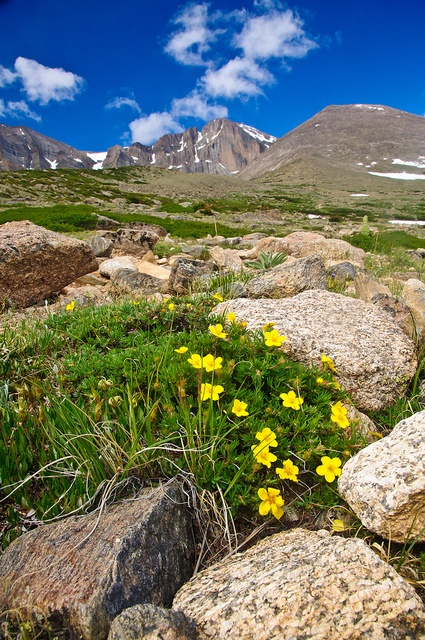 Chasm Lake Trail, Colorado (Longs Peak is in the background)