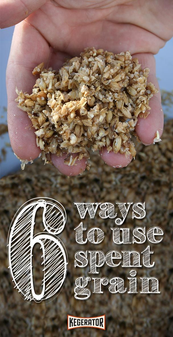5 Ways to Use Spent Grain