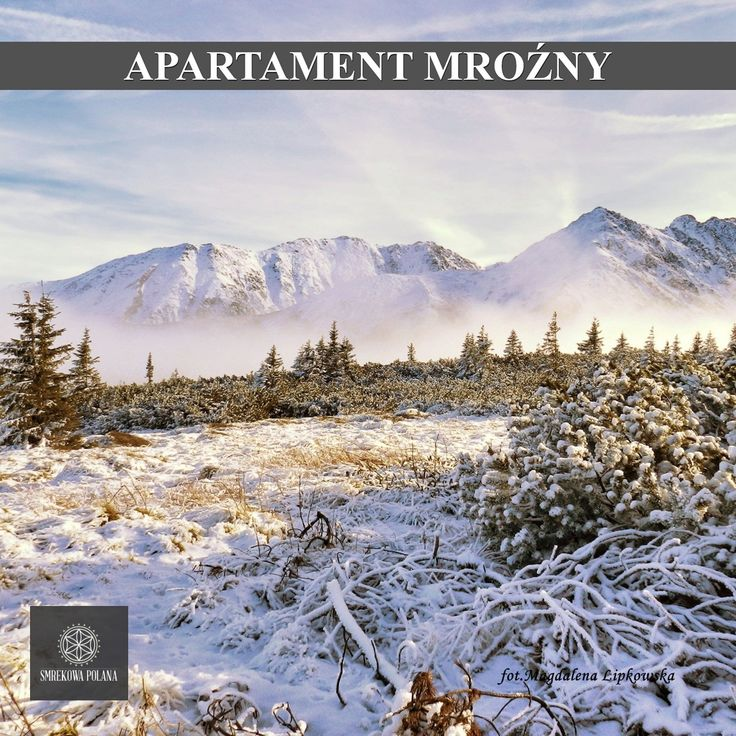 mrekowa Polana Resort & SPA Apartament Mroźny - zapraszamy! więcej: www.smrekowapolan... #poland #polska #malopolska #zakopane #mountain #tatry #place #gąsienicowa #winter #zima #destination