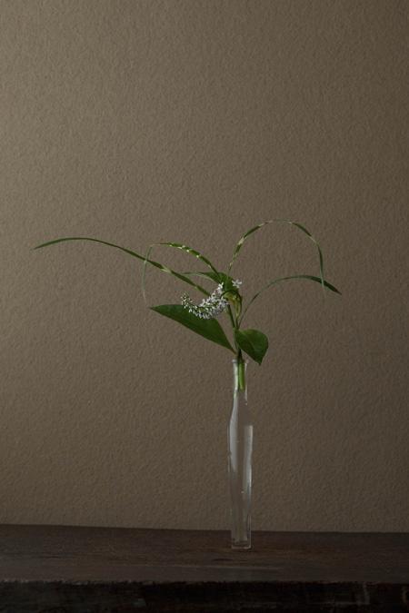 花人:川瀬敏郎 花:岡虎ノ尾(オカトラノオ)、矢筈薄(ヤハズススキ) 器:古ガラス細瓶(20世紀)