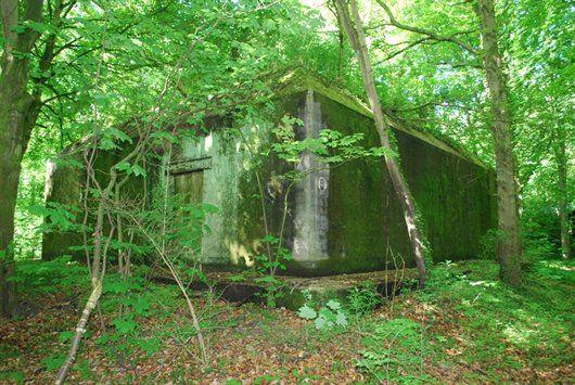 Bunkers in het Staelduinse Bos bij 's-Gravenzande