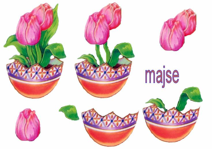 tulipaner i ægvase