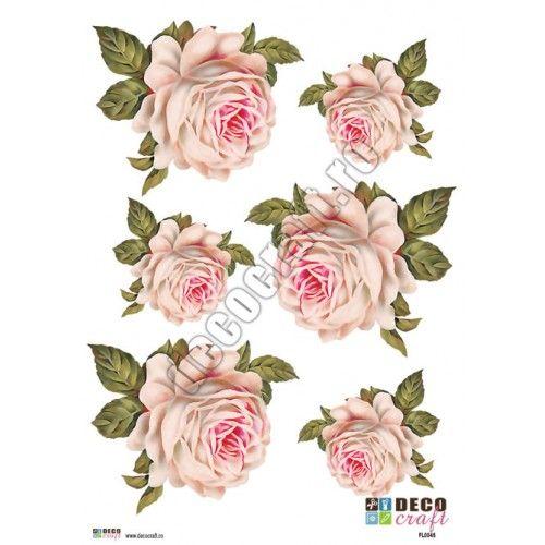 Hartie Decoupage Clasica : Hartie decoupage A4 - Trandafir alb vintage