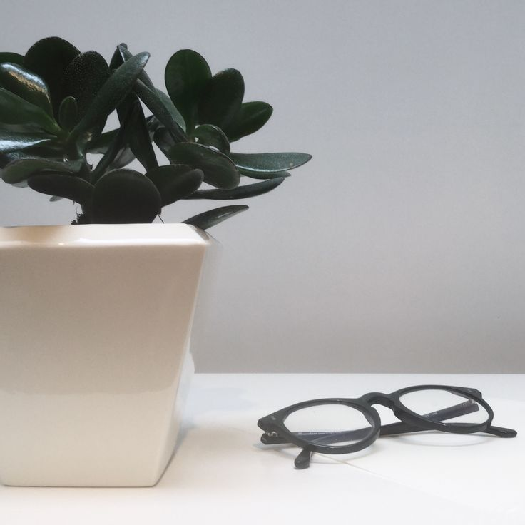 Amfora Tri pot with green plant and glasses.