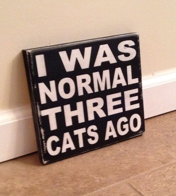 Crazy Cat Lady Sign wood wall art by MittenMadeDesigns on Etsy, $10.00