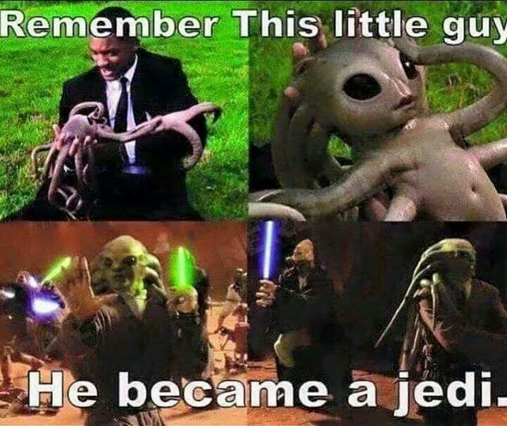 How cutee!!! Really that baby Kit Fisto really looks cute