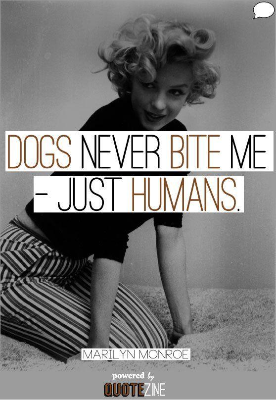 """alt=""""Marilyn Monroe dogs never bite me"""""""