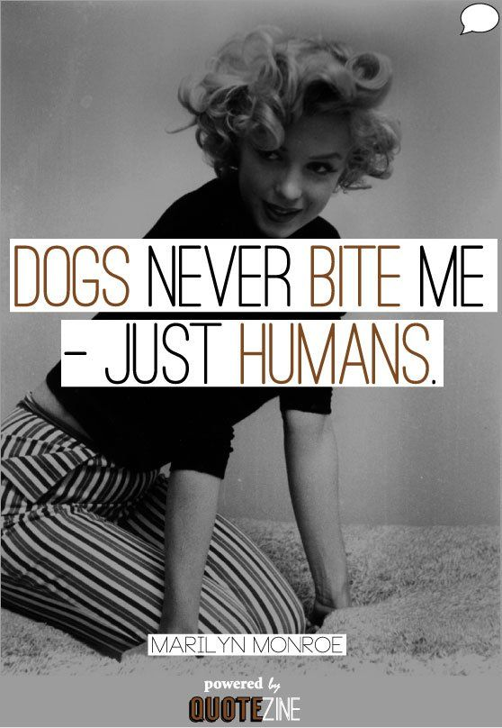"alt=""Marilyn Monroe dogs never bite me"""