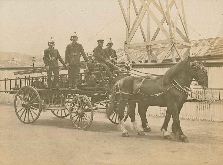 'Pride of Dunedin' Horse-drawn Fire Engine  New Zealand