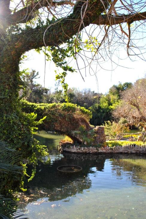Best 25 Sunken Gardens San Antonio Ideas On Pinterest
