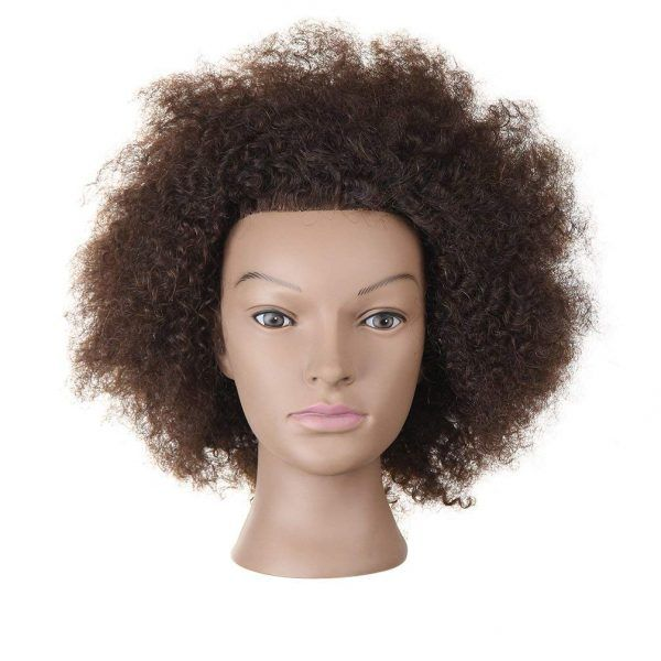 Mannequin Head African American With 100 Human Hair Cosmetology Afro Hair Manikin Head For Practice Styling Braiding Afro Hairstyles 100 Human Hair Human Hair