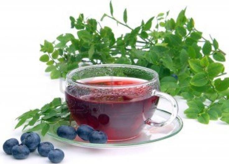 Chinook Blueberry Tea (Native American Recipe)