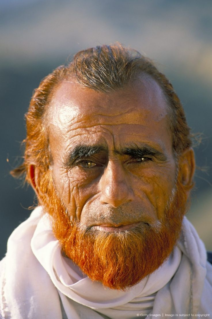 Image detail for -Portrait of a Pathan man with hennaed beard, Khyber Pass, Pakistan, Asia