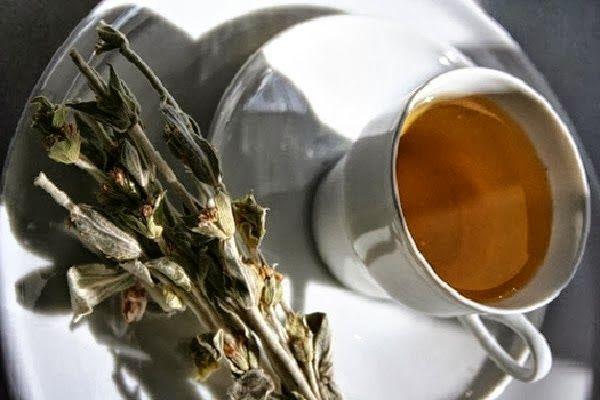 Greek herbal mountain tea ~ Τσάι του βουνού   Smile Greek