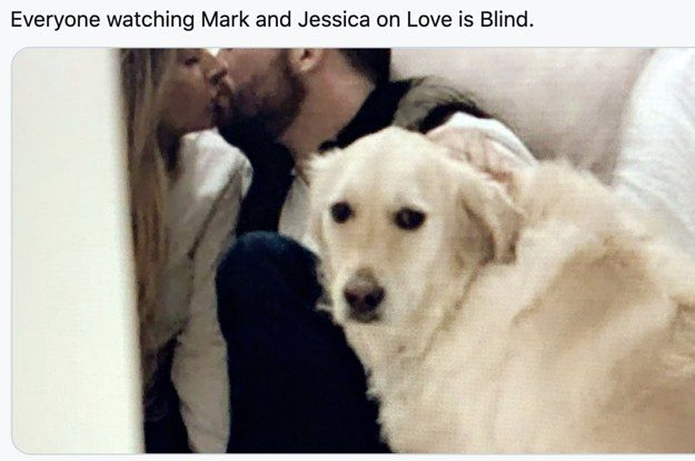 24 More Tweets About Love Is Blind Because I Can T Get Enough Of That Show Funny Love Nursing Fun Funny
