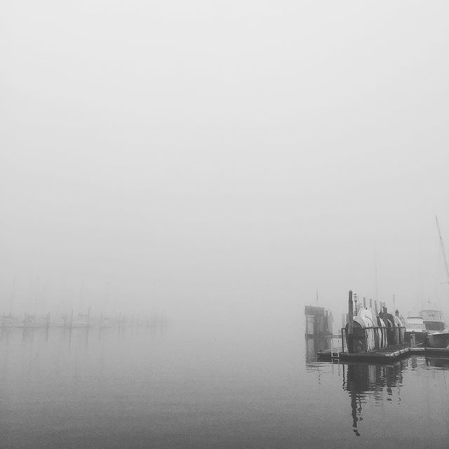 Walk to work today. Fog over the marina looking beautiful. #liferaft #milesfortune