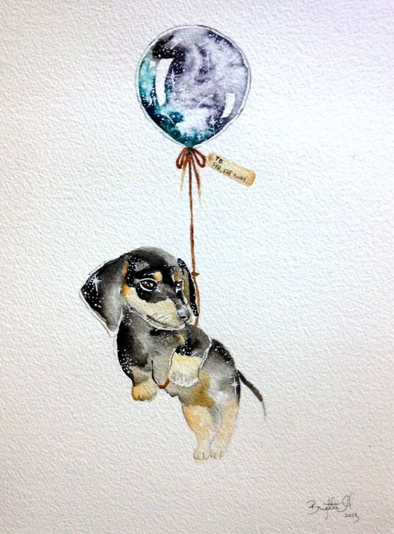 135 Best Dachshund Watercolor Art Images On Pinterest